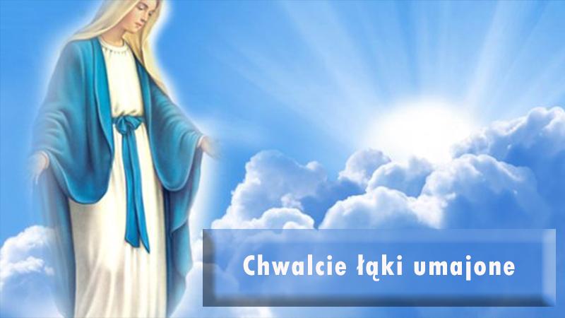 You are currently viewing Zapraszamy na nabożeństwa majowe w dni powszednie o godz. 18.30, a w soboty i niedziele o godz. 18.00.